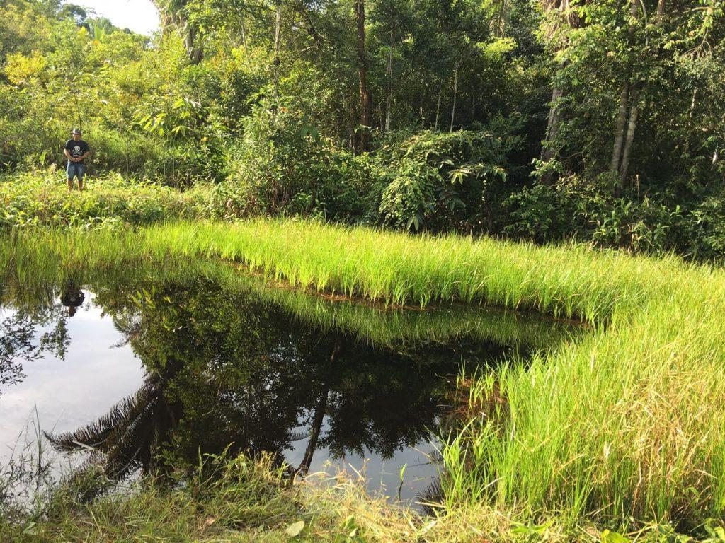 Foto van het groene meer waarin gedoopt werd
